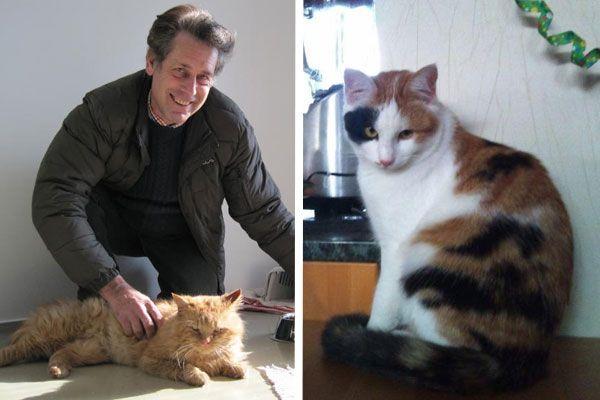 Karl-Heinz Hanny bringt wöchentlich fünf Katzen ins Tierschutzheim. - Pauline ist seit rund zwei Wochen verschwunden.