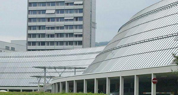 Die 52-Jährige erlag im LKH Feldkirch ihren schweren Kopfverletzungen.