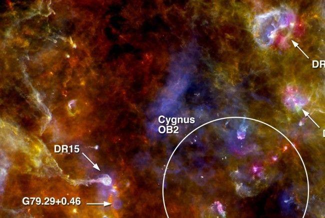 Der Staub- und Gasnebel Cygnus-X im Sternbild Schwan.