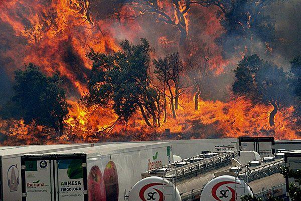 In Nordspanien sind bei Waldbränden vier Menschen ums Leben gekommen.