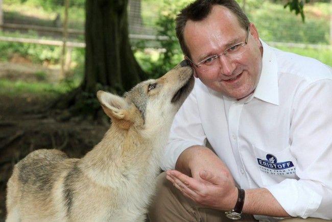Eristoff übernahm die Partnerschaft für das Wolfsmädchen Tala.