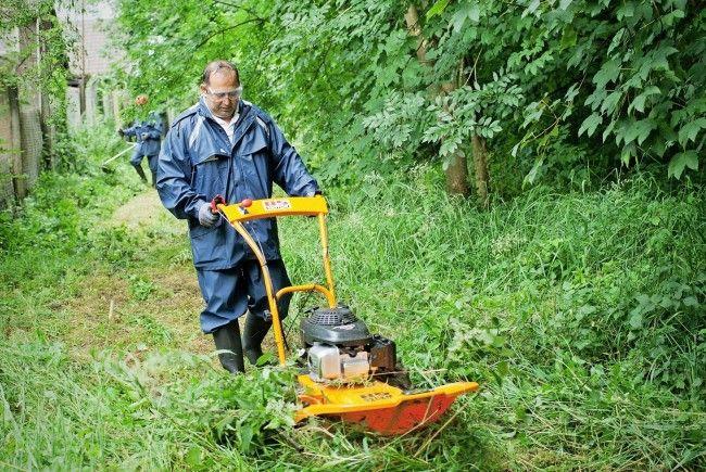 Hilfe bei der Gartenarbeit bietet der neuen Dienstleistungsbereich der Kaplan Bonetti Arbeitsprojekte.