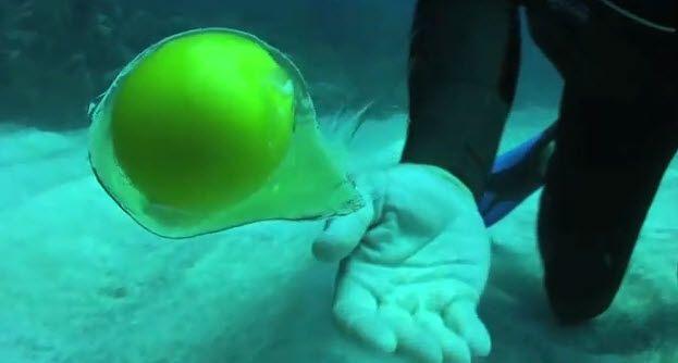 Gelbes Ding schwimmt unter Wasser.