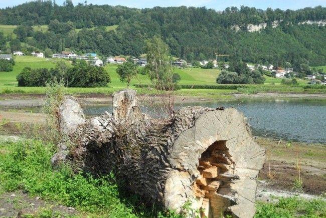 Das wunderschöne Erholungsgebiet Egelsee auf der Grenze zwischen Liechtenstein und Österreich
