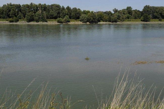 An dieser Donau-Stelle wurde das tote Neugeborene gefunden.
