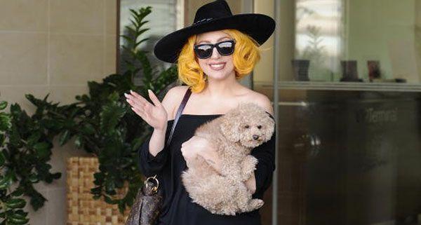 """Lady Gaga und """"Fozzi"""" sind gut in Wien angekommen."""