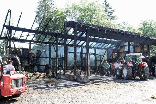 Stallgebäude fiel Flammen zum Opfer.