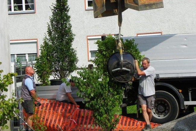 Stadtgärtnerei sorgt für frisches Grün