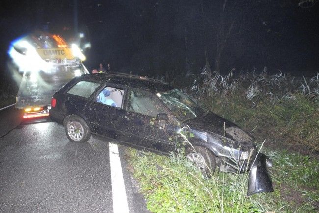 Das Unfallfahrzeug landete in einem Gebüsch neben der Straße.