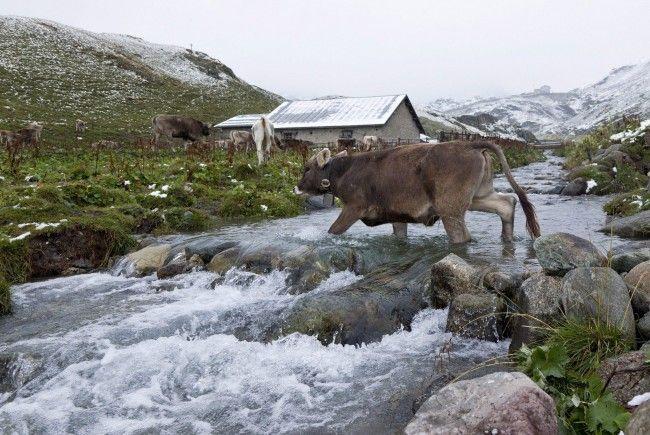 Gletscherschmelze hat aus Sicht des Tourismus Potenzial.