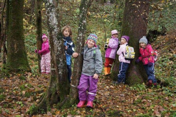 Den wald hautnah erleben kinder der vs gütle beim unterricht in