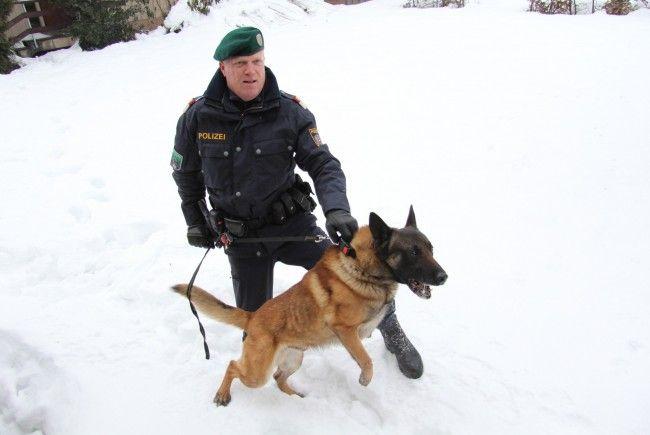 partnersuche mit hund österreich