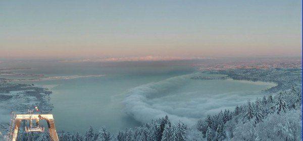 Bodensee singleborse