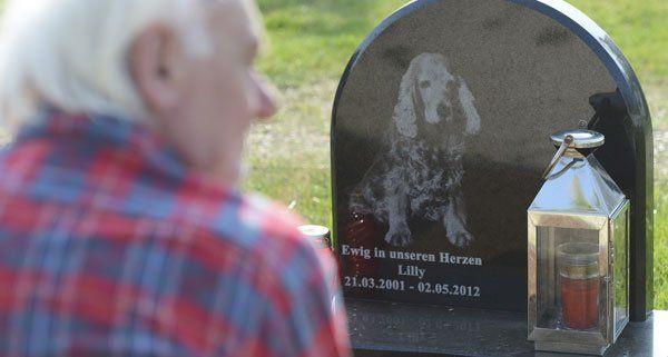 Immer mehr Haustierbesitzer entscheiden sich für eine letzte Ruhestätte am Tierfriedhof.