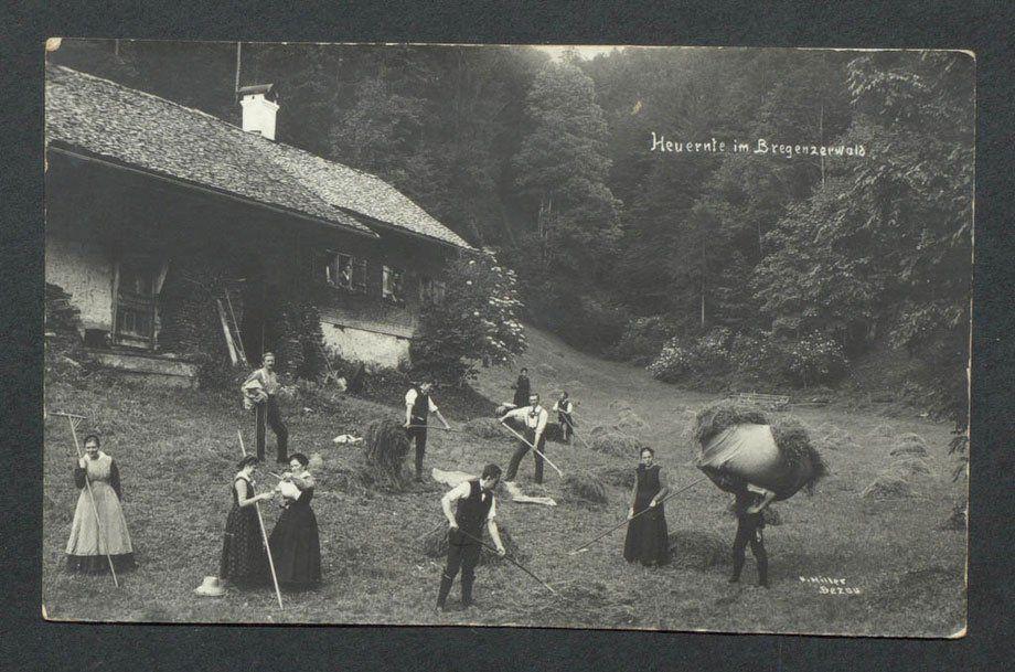 Bei der Heuernte in Bezau um 1900. (Bild: Kaspar Hiller)