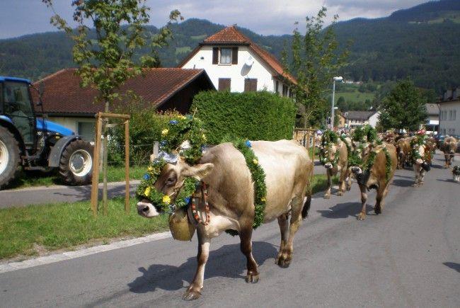 Partnersuche landwirt österreich