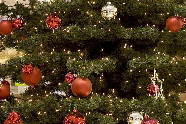 weihnachtbaum in stra burg schief wie der turm von pisa. Black Bedroom Furniture Sets. Home Design Ideas