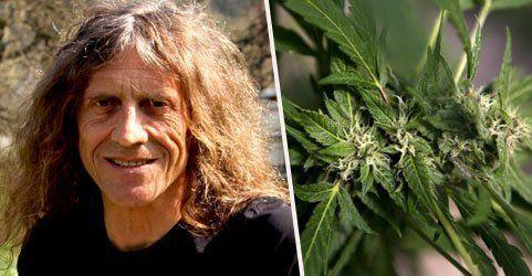 """26.000 für freies Cannabis – Amann sieht """"Luft nach oben"""""""