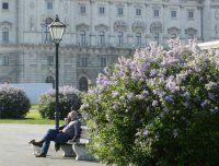 Wien hat die beste Lebensqualität