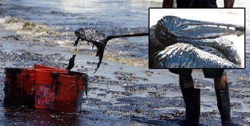 Ölpest vor Kalifornien: 80.000 Liter Öl strömen in den Pazifik