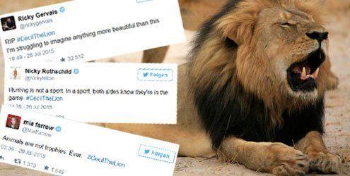 So wütend sind die Promis auf den Jäger, der Löwe Cecil tötete