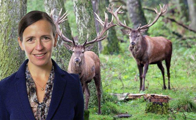 Die gebürtige Vorarlbergerin soll die Jäger im Kampf gegen TBC unterstützen.