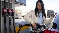 Palmöl fließt zur Hälfte in Autotanks