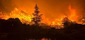 Waldbrände und extreme Hitze in Südkalifornien