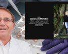 Eizellen-Verwechslung: Vorwurf gegen Bregenzer Arzt