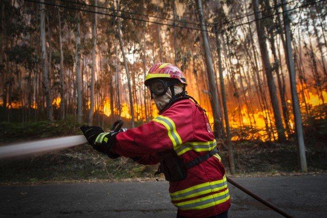 Drei Tote: Madeiras Hauptstadt Funchal von Flammen eingekesselt