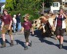 Volksfest beim Alpabtrieb