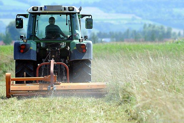 Derzeit erhalten viele Bauern die neuen Bescheide