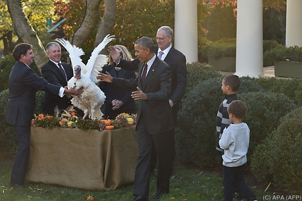 Obama begnadigt letztmalig Thanksgiving-Truthähne