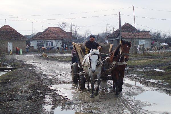 Roma leben oft in erschreckenden Zuständen