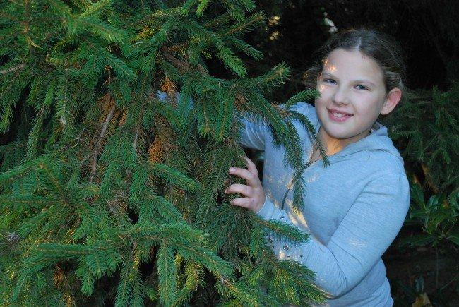 Ida, 11, wünscht sich auch dieses Jahr einen schönen Christbaum. Die große Fichte bleibt aber im Garten stehen.