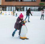 Eislaufen Am Garnmarkt