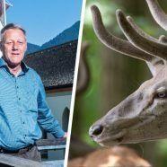 Wildverbiss: Laternser Bürgermeister mit eigenen Forstbetrieb im Clinch