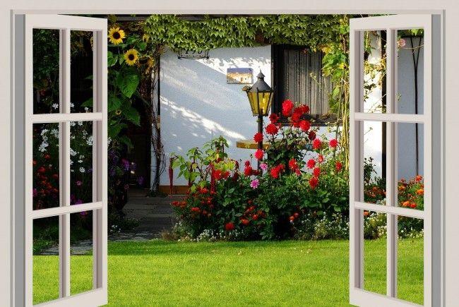 Der Kleingarten – das überschaubare Paradies der Städter