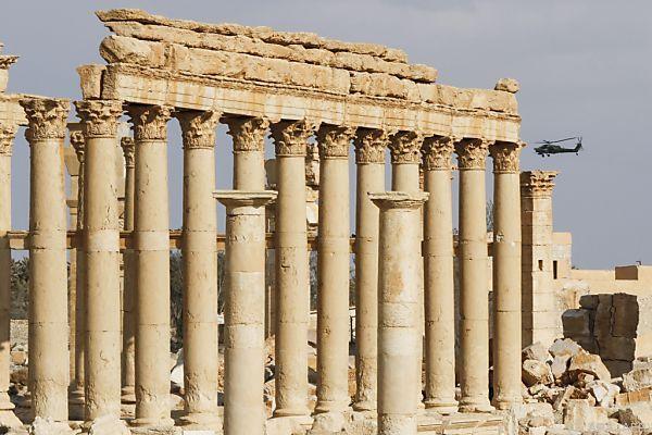 Mittel sollen auch in Palmyra eingesetzt werden