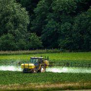 Vorarlberger Landesregierung bei Glyphosat uneinig