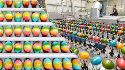 Eierfärbe-Betrieb: Hier werden 20 Millionen Eier für Ostern gefärbt!
