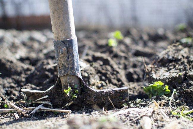 Gärtnern heißt selbst machen – mit dem richtigen Werkzeug
