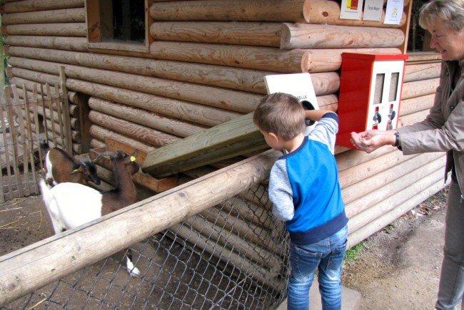 Es wird dringend gebeten, nur die bei manchen Tieren angebrachten Futterautomaten zu verwenden, deren Inhalt für die betreffende Tierart geeignet ist.