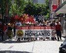 Demo gegen Monsanto und TTIP in Bregenz