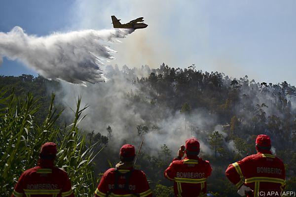 Feuerwehr im Einsatz gegen die Flammen
