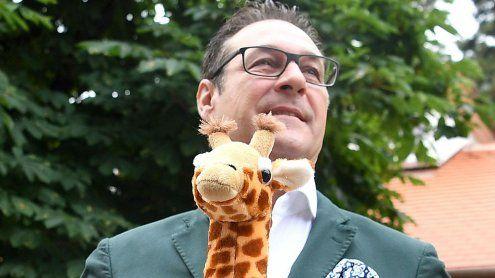 HC Strache unterstützt zwei afrikanische Giraffendamen