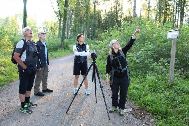 Seltene Pflanzen und Tiere im Natura 2000 Gebiet werden regelmäßig auf Exkursionen beobachtet.