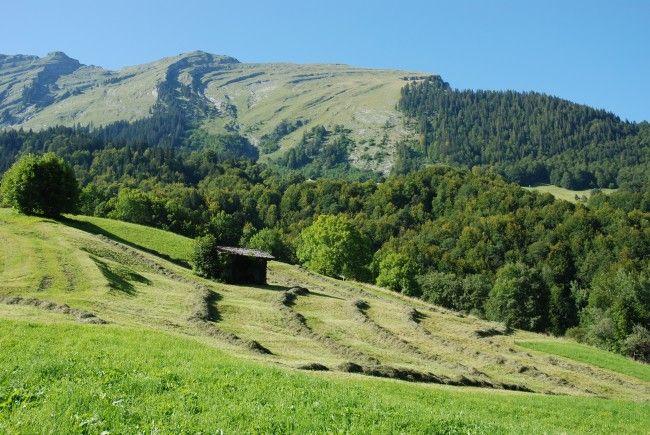 Landwirte aus Au und Schoppernau tragen zur flächendeckenden Bewirtschaftung und damit zur Erhaltung der Kulturlandschaft als Grundlage für den Tourismus bei.