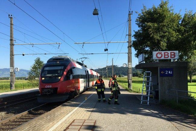 Partnersuche Reticent Vorarlberg