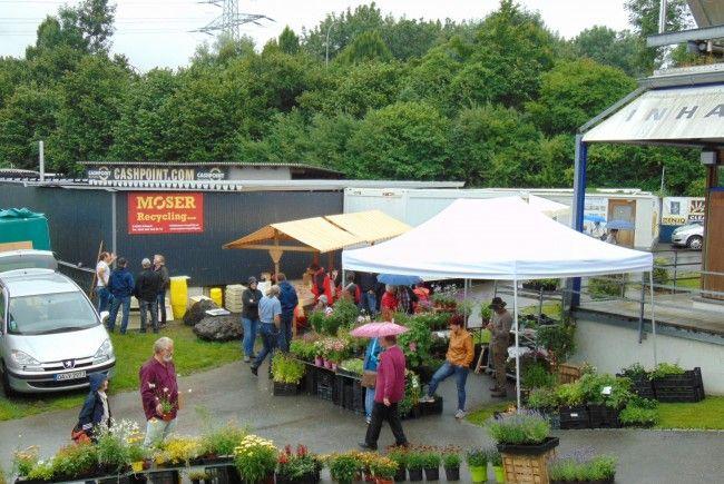 Trotz Regenwetter fanden sich wieder zahlreiche Besucher beim Bienenmarkt ein